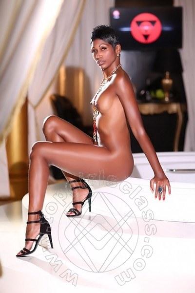 Serena Latina  OLBIA 3282616337